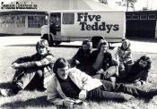 FIVE TEDDYS